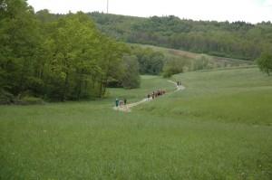Valle Belbo 4