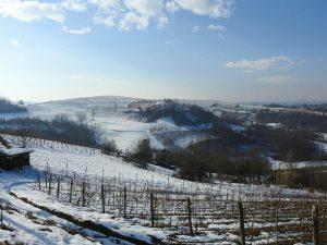Venerdì 8 dicembre: La camminata del magico paese di di Babbo Natale