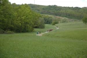 Valle Belbo 2